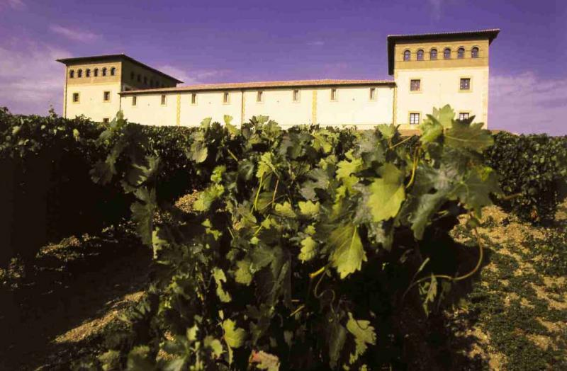Vineyard for Sale at Winery/Vineyard for sale in D.O. Ribera del Duero Burgos, Spain