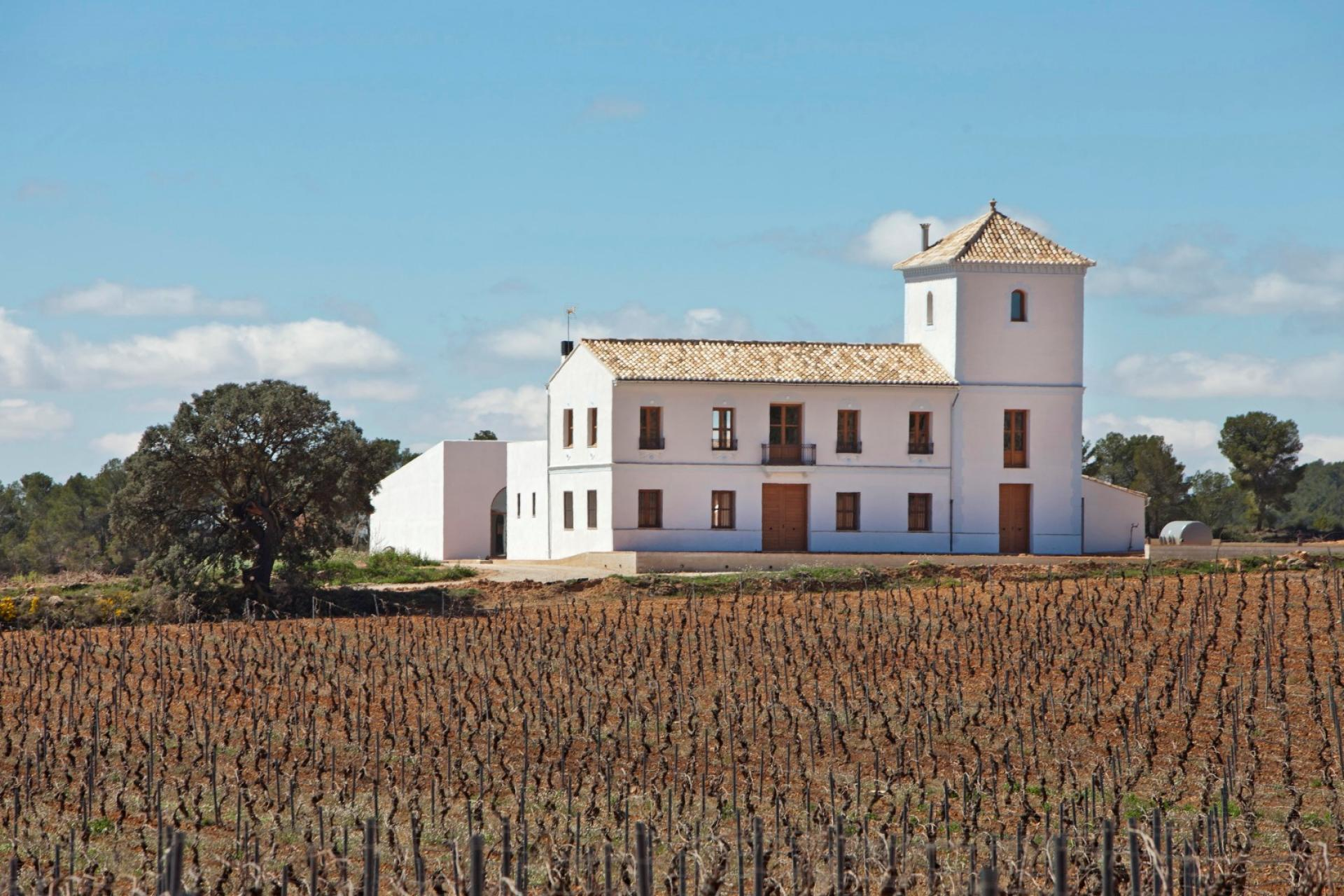 Vineyard for Sale at Winery/Vineyard for sale in Requena Valencia, Spain