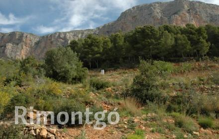 Plot without project for sale in Partida Montgo, Jávea (Xàbia), Alicante and Costa Blanca