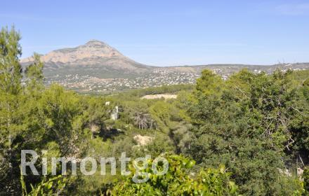 Excellent plots with a lot of potential in the location of Javea.
