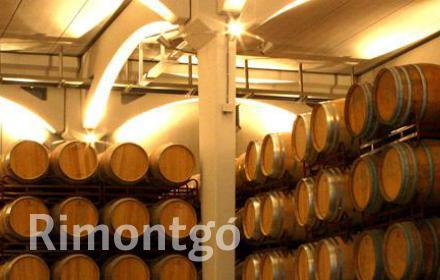 Winery for sale in D.O. Utiel Requena, Valencia