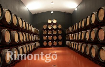Winery for sale in D.O. Toro, Zamora