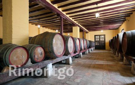 Winery for sale in D.O. Navarra, Navarra