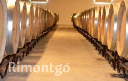 Winery for sale in Requena, Valencia