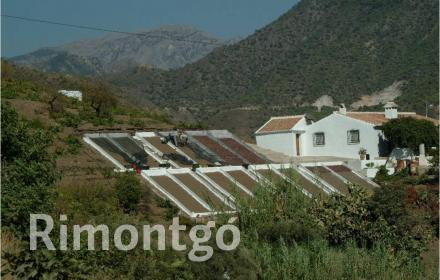 Winery for sale in Velez Malaga, Malaga and Costa del Sol
