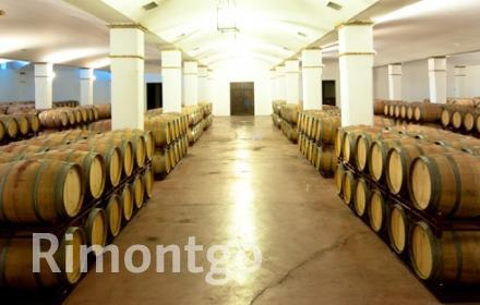 Winery for sale in Garrovillas de Alconetar, Caceres