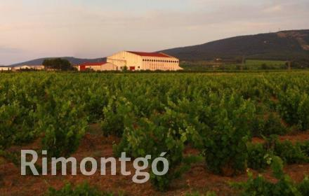 Winery for sale in Fontanars dels Alforins, Valencia