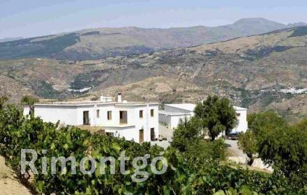 Winery for sale in Granada City