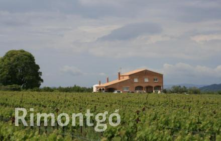 Winery for sale in Tarragona City