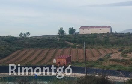 Winery for sale in D.O. Campo de Borja, Zaragoza